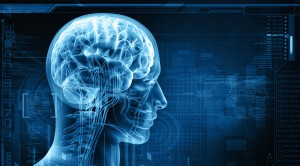 psychophysiology-catalog