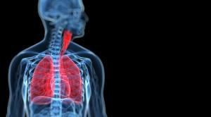 respiration-catalog